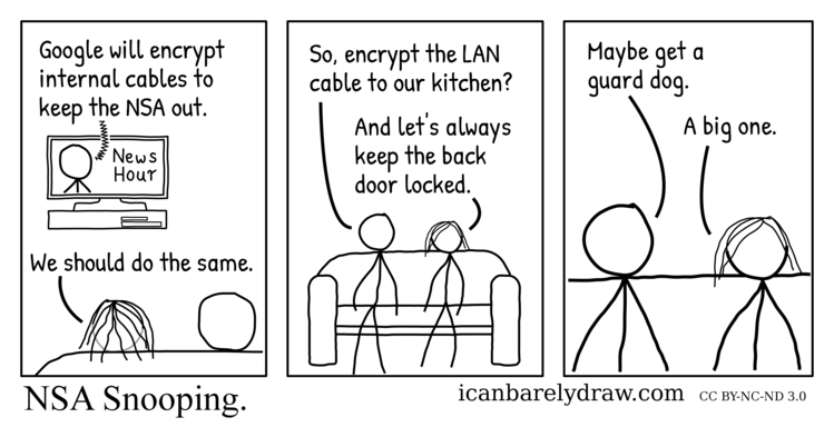 NSA Snooping. TV viewers concerned about NSA snooping consider encrypting the LAN cable into their kitchen, keeping their back door locked, and getting a dog for security.